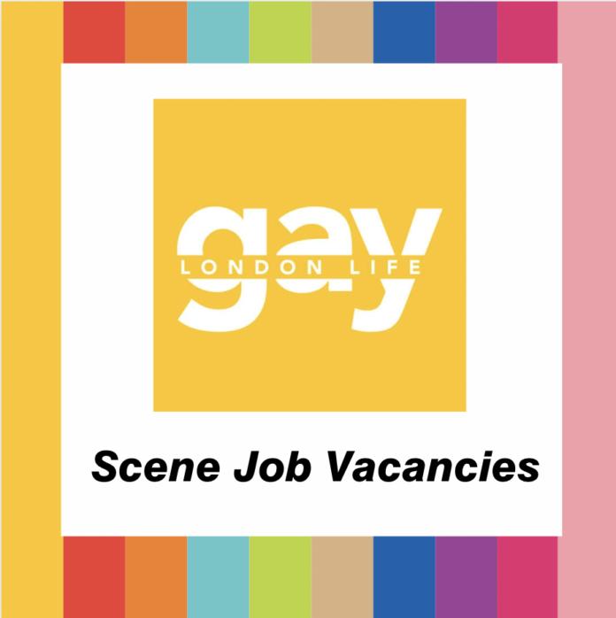 Scene Job Vacancies